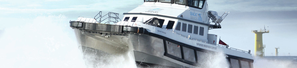 Seacat vigilant ready for action colour edit